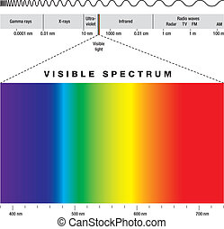 Electromagnetic Spectrum - electromagnetic spectrum of all...