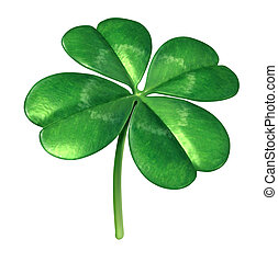 Four Leaf Clover - Four leaf clover plant as an Irish symbol...