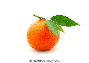 mandarin - tangerine isolated on a white background