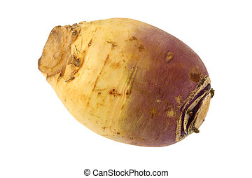 Turnip (Brassica rapa) - Closeup photo of Turnip (Brassica...