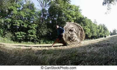 pushing hay-bale - sporty man pushing hay-bale huge effort...