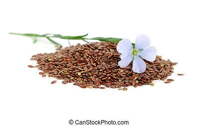 lino, semillas, flores