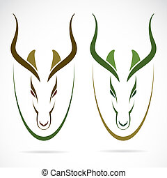 Vector image of an head impala and horns