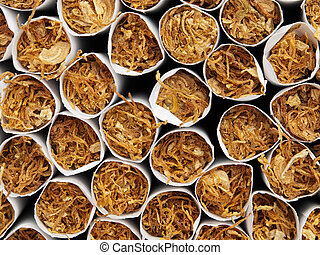 Tobacco - Macro front view of tobacco inside of cigarettes.