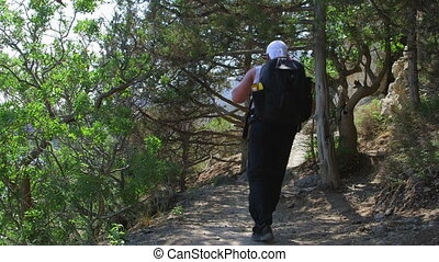 Hiker On The Golitsyn Trail Track - Golitsyn Trail Track - a...
