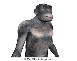 Homo Habilis - Human Evolution - Computer generated 3D...