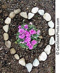 Herzliche Blumen - Blhende Blumen in Erdbeet, umrahmt von...