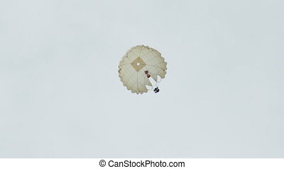 Paratrooper skydiver in the sky