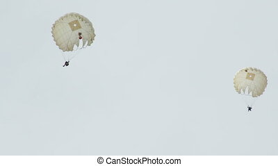 Paratroopers skydivers in the sky