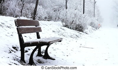 Bench covered with ice