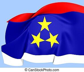 Flag of Vojvod