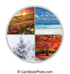 Seasons - Four seasons of year on one picture