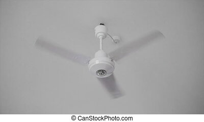 Ceiling Fan - Video 1920x1080p - Ceiling Fan