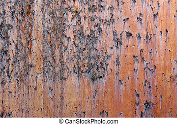 Metal old rusty surface