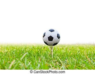soccer ball on golf tee isolated