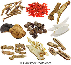 Assortment of Dried Chinese herbs - Herbal medicine :...