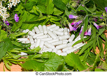 Border of fresh herbs with supplement capsules - Border of...