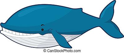 azul, ballena