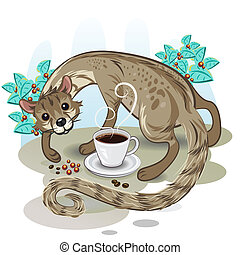 Civet Coffee Kopi Luwak - Civet Cat Pick Up Coffe Bean With...