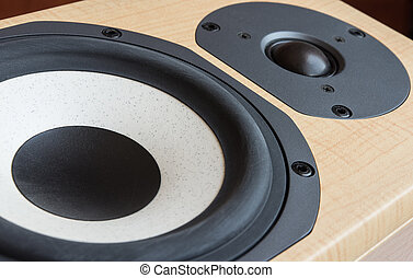 Loudspeaker closeup - Closeup of mid-range and tweeter...
