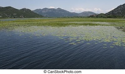 Skadar Lake - scenic summer landscape on the famous Sakadar...