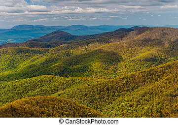 Spring colors in the Appalachian Mountains, seen from Blackrock Summit in Shenandoah National Park, Virginia.