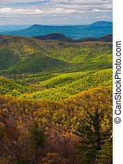 Spring colors in the Appalachians, seen from Blackrock...