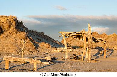Beach Dog House - One happy dog enjoying a good sunset at...