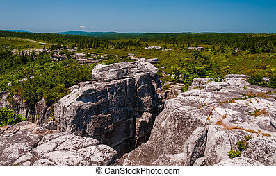 The rugged, rocky terrain of Bear Rocks, in Dolly Sods Wilderness, Monongahela National Forest, West Virginia.