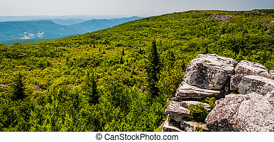 View east of the Appalachians from Bear Rocks