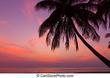 Tropical beach with palm tree at sunset, Thailand