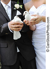 newlyweds with doves - newlyweds holding white doves in...