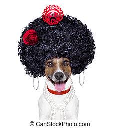 chien, espagnol