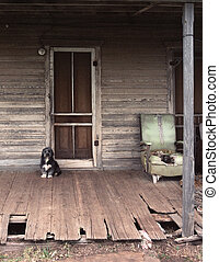 Guard Dog - A rather small dog is guarding the front door of...