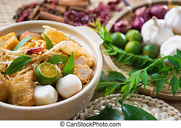 Singapore famous curry noodle or laksa mee with decorations...