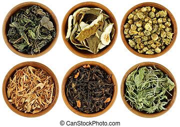 herbario, té, secado