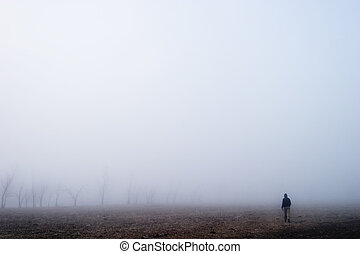 Fog Walk - Walking in the fog