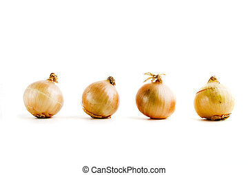Onion Row - four onions lined up in a row