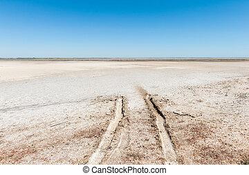 Tracks in desert