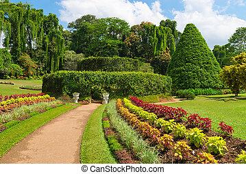 Beautiful tropical botanical garden - Beautiful tropical...
