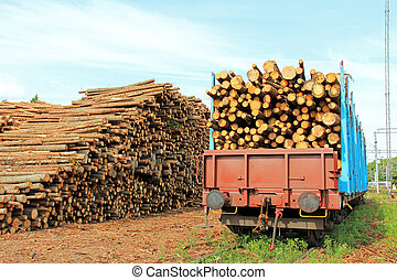 Wood at Railway Station - Storage of wood at railway station...