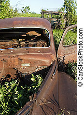 Overgrown Antique Car