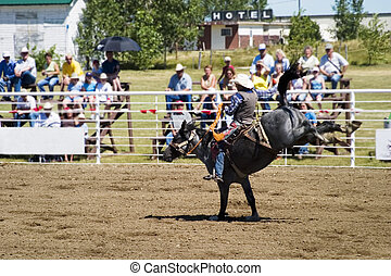 Bare Back Riding - Bare back riding at the Herbert Rodeo,...
