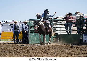 Saddle Bronc riding at the Herbert Rodeo