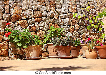 Potted plants in front of a stone wall