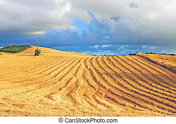 Hay in the fields from Portugal in summer