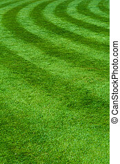 Grass - Proffesional grass with the circle