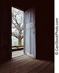 puerta, oscuridad, luz