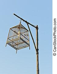 cage d'oiseaux, lampe