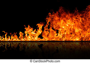 fire flames - Fire flames on a black background